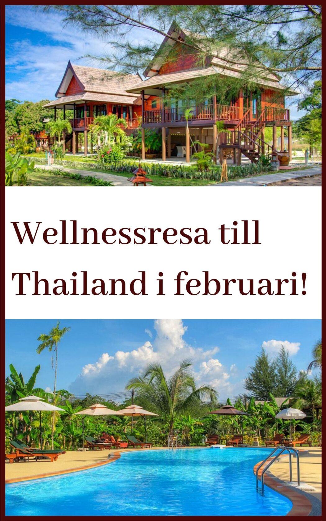 wellnessresa Thailand Fan Xiulan Mikael Karlholm