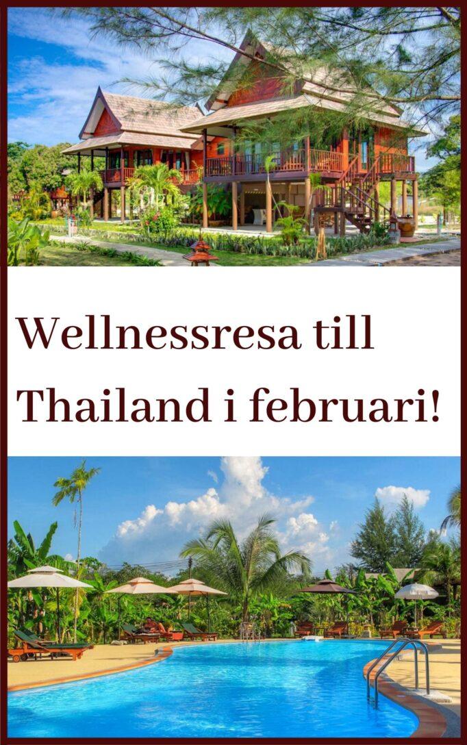wellness trip Thailand Fan Xiulan Michael Karlholm
